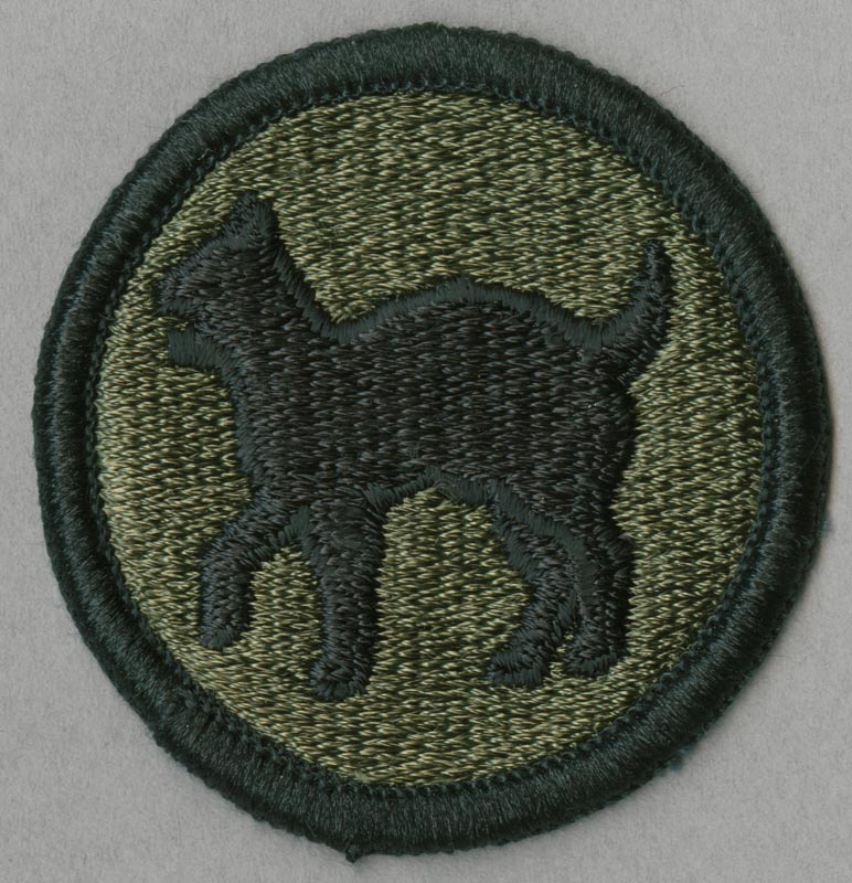81st Infantry Division Wildcat Shoulder Patch