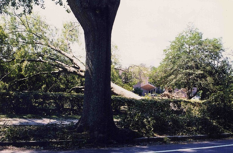 The Flood of the Century; Hurricane Dennis and Floyd Damage